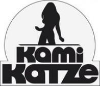 KamiKatze in Wrzburg  Nachtlotsede