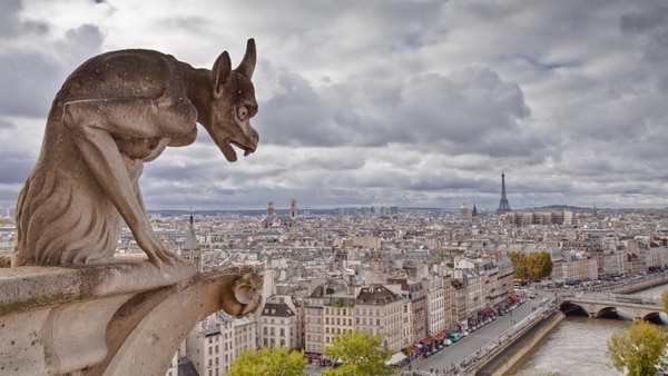 One of the Gargoyles of Notre Dame, before the fire of 2019.