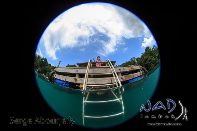 Housereef Ladder at NAD Lembeh Jetty