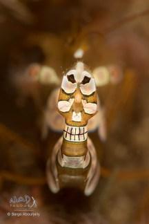 Smiling Skull ;)