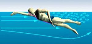 resistencias en natacion