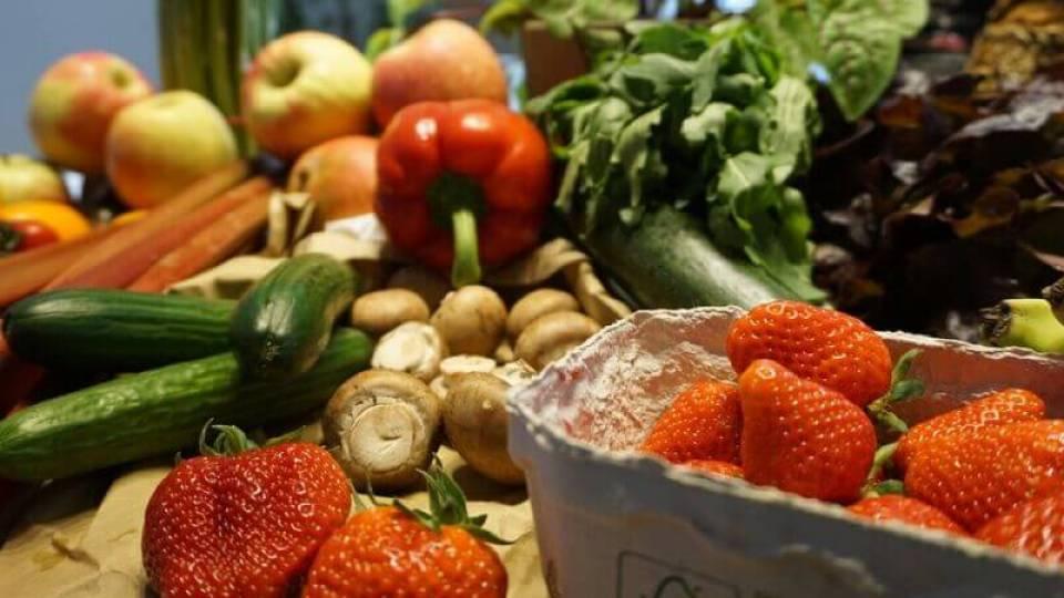 Periodización de la Nutrición para Triatlón