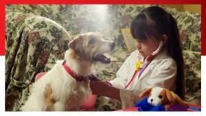 مؤسسة ندى | Sophia has big dreams of becoming a veterinarian. With your help, she can have t…
