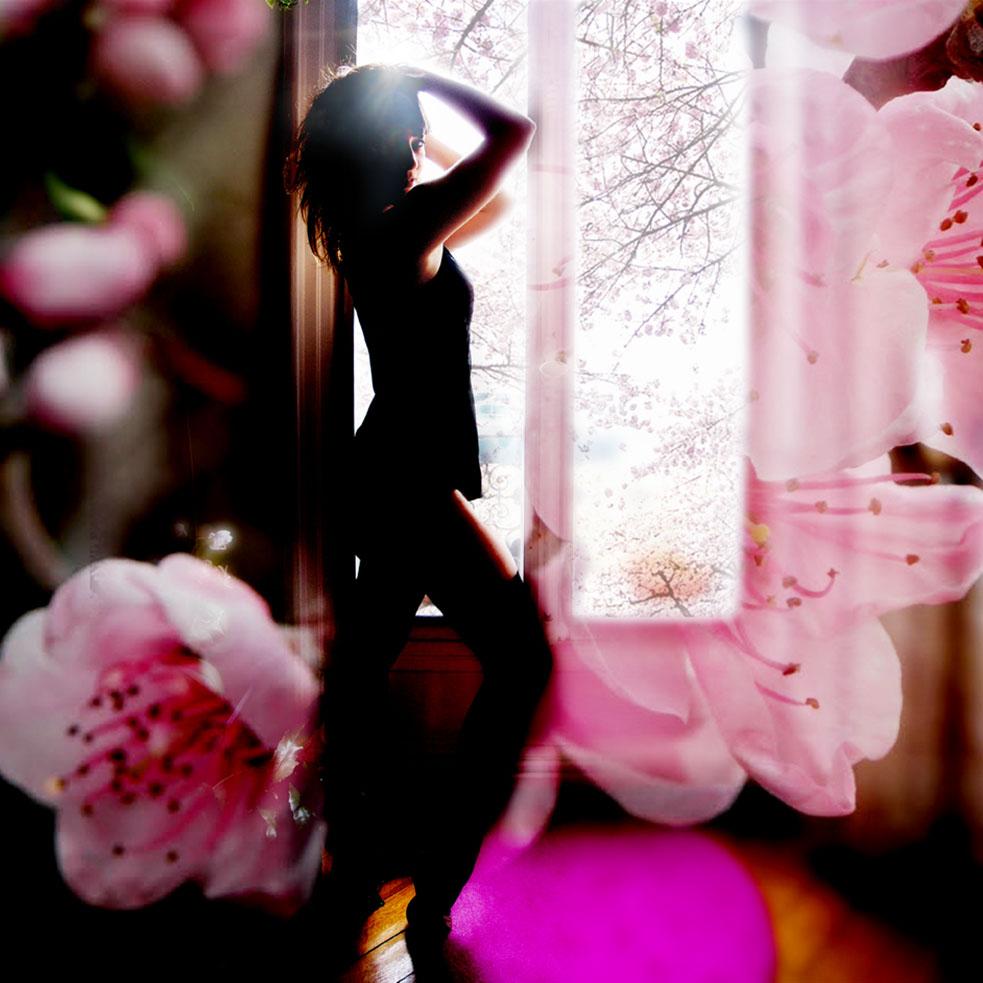 cherry blossom nadia rabhi -18