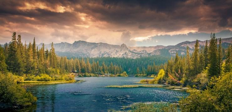 landscape-336542