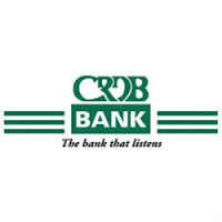 Business Analyst at CRDB Bank