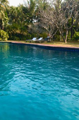 salt swimming pool naga hill resort