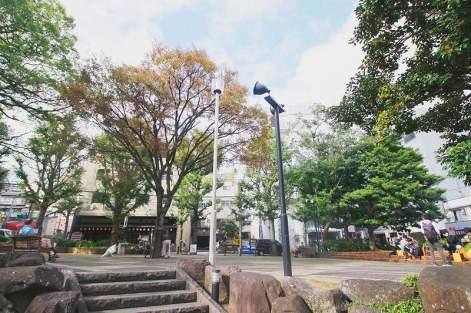 20191106-kankoka-maruyama (6)