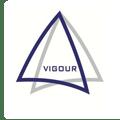 Vigour Metals And Alloys