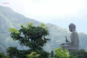 Day 3 Holiday In Hong Kong In July 2014 - View of Big Buddha in Nature