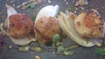 FYR Cycene Ond Drinc - Small Plate: Roasted US Bay Scallop