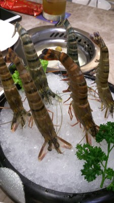 Fu Lin Men Dou Lao Singapore - Fu Lin Men Dou Lao Singapore - Live Prawns