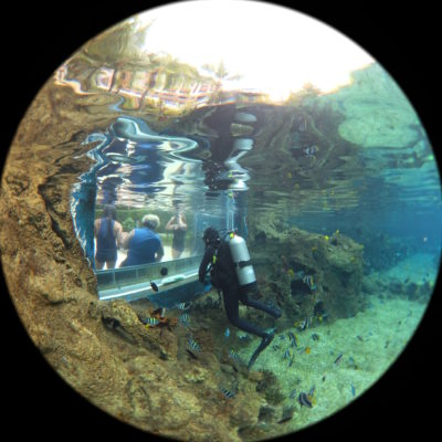 Exploring Adventure Cove Water Park With Casio FR200 - Another view of Dome mode under water