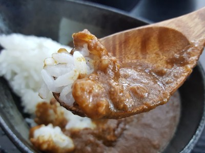 Magosaburo Wagyu Dining at Ion Orchard, Value-For Money Beef Lunch Set - Rich Wagyu Curry Rice closer look