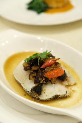 First Culinary Special Black Garlic Set Menu, Nutritiously Delicious - Steamed Cod Fillet with Minced Black Garlic and Chili Soya Sauce