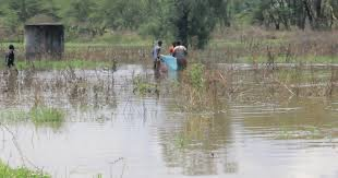 UN to study Kenya's rising water levels in lakes