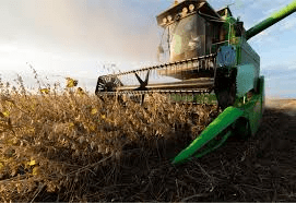 Soybeans edge higher, but set for first monthly loss in ten months