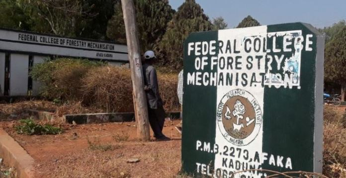 5 kidnapped forestry college students regain freedom
