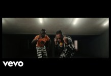 Selebobo OVA ft Tekno Video Download Mp4