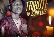 Mapoly All Stars Tribute To Surplus Various Artistes Mp3 Download
