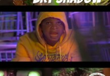 Brt Shadow Vine And Vibes Video mp4 mp3 download