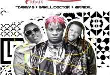 Danny S ft Small Doctor Mr Real Off The Light Remix mp3 download