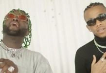 Skales ft Tekno Badman Love Remix Video mp4 download