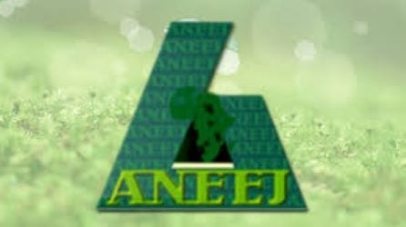African Network for Environment and Economic Justice (ANEEJ)