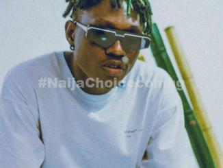 I Was Once A Bricklayer Before Music Pave Way For Me - Zlatan Ibile