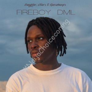 DOWNLOAD MP3: Fireboy DML – Wait and See