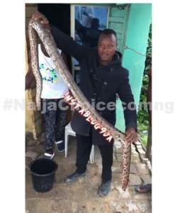 Man Kills Gigantic Snake Inside His Shop (Video)