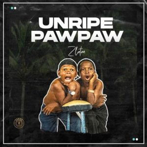 DOWNLOAD MP3: Zlatan – Unripe Pawpaw