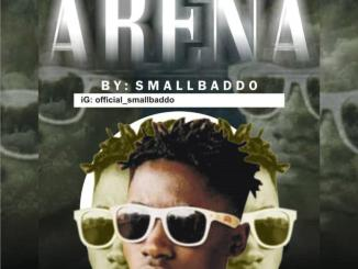 DOWNLOAD: Small Baddo - For My Arena