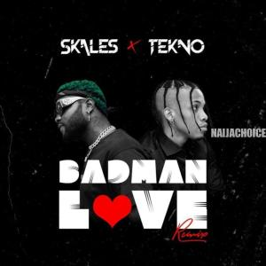 DOWNLOAD MP3: Skales Ft. Tekno – Badman Love (Remix)
