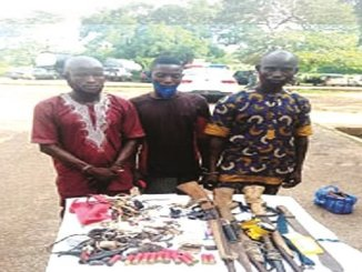 Photo Of The 3 People Arrested For Shooting Cows In Oyo