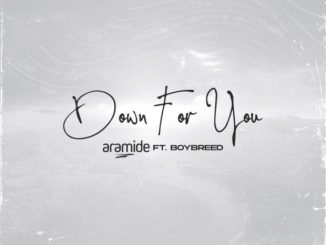 DOWNLOAD MP3: Aramide – Down For You ft. Boybreed