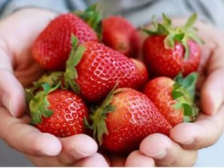 4 common fruits that can prevent vitamin and mineral deficiencies