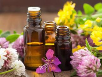 Is it safe to ingest essential oils? Find out here!