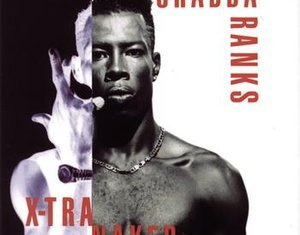 Best of Shabba Ranks Dj Mixtape (Greatest Hits)