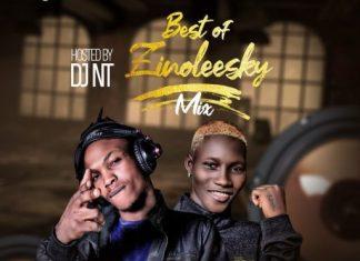 DJ NT – Best Of Zinoleesky Mix (Zinoleesky 2020 Songs)