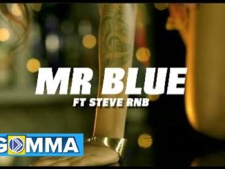 Mr Blue Ft. Steve Rnb – Pombe Na Muziki