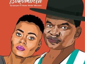 DJ Ganyani – Tsokombela Ft. Tribute 'Birdie' Mboweni