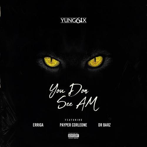 Yung6ix – You Don See Am Ft. Erigga, Payper Corleone, Dr Barz mp3 download