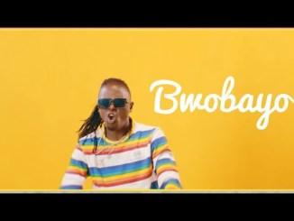 Radio & Weasel – Bwobayo