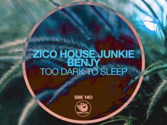 Zico House Junkie Ft. Benjy – Too Dark To Sleep