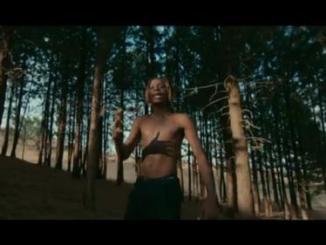 VIDEO: Fireboy DML Ft. D Smoke – Champion