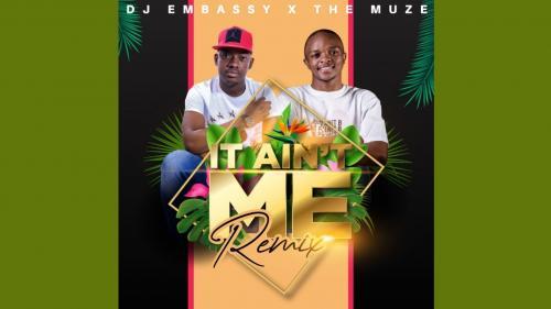 Dj Embassy, Muze – It Ain't Me (Remix) mp3 download