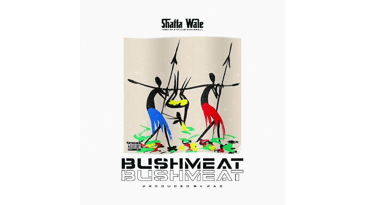 Shatta Wale – Bushmeat mp3 download