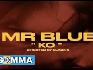 Mr Blue – KO