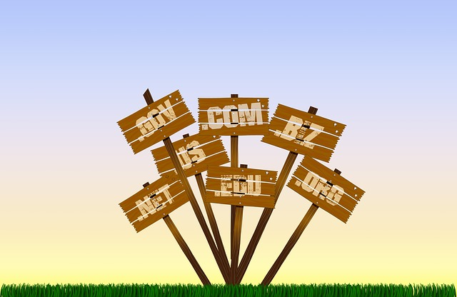 how to register the perfect domain name